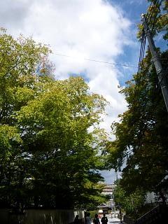 20131017東福寺(その56)