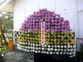 20131109二本松菊人形祭り(その15)