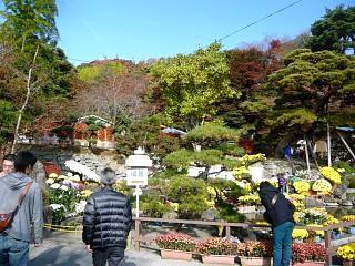 20131109二本松菊人形祭り(その24)