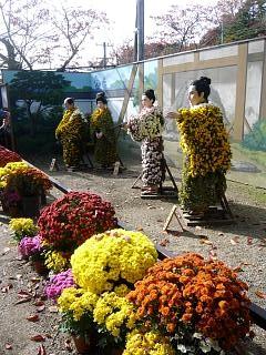 20131109二本松菊人形祭り(その33)