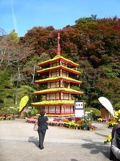 20131109二本松菊人形祭り(その66)