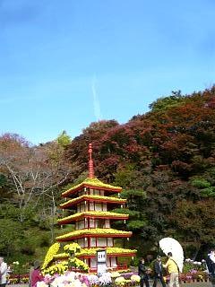 20131109二本松菊人形祭り(その68)