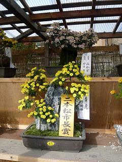 20131109二本松菊人形祭り(その82)