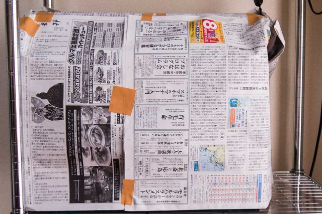 新聞ですべてを覆ってみた水槽