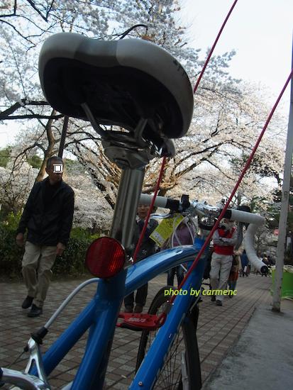 青の自転車