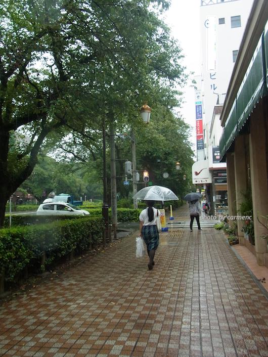 雨の大学通