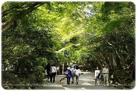 sayomaru10-191.jpg