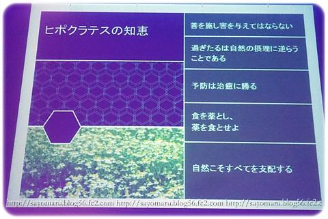 sayomaru10-386.jpg