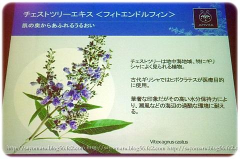 sayomaru10-388.jpg