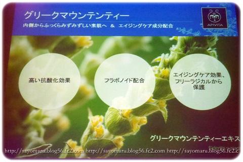 sayomaru10-390.jpg