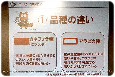 sayomaru10-522.jpg