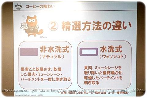 sayomaru10-523.jpg