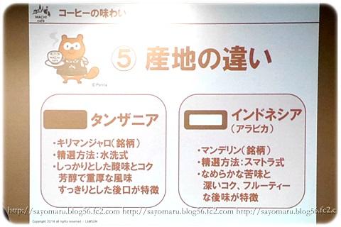 sayomaru10-526.jpg