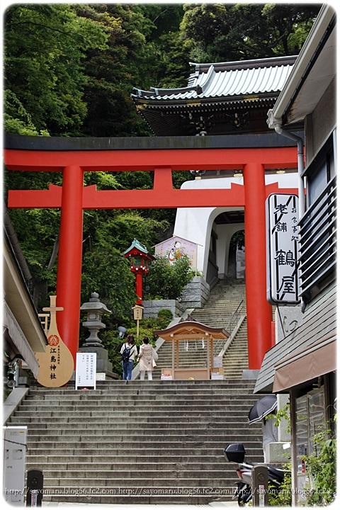 sayomaru10-76.jpg