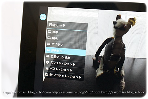 sayomaru8-785.jpg