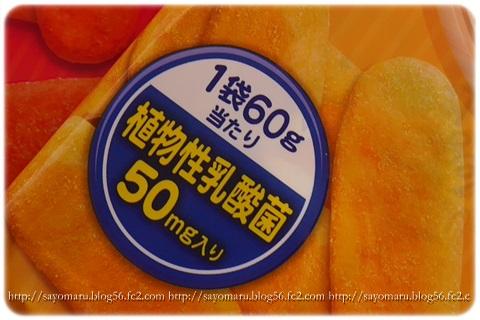 sayomaru8-838.jpg