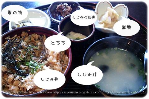 sayomaru8-871.jpg