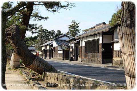 sayomaru8-905.jpg
