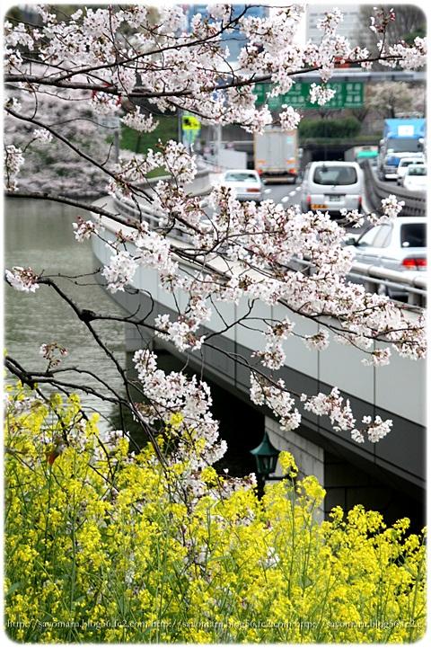 sayomaru9-159.jpg