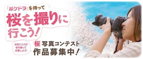 sayomaru9-164.jpg