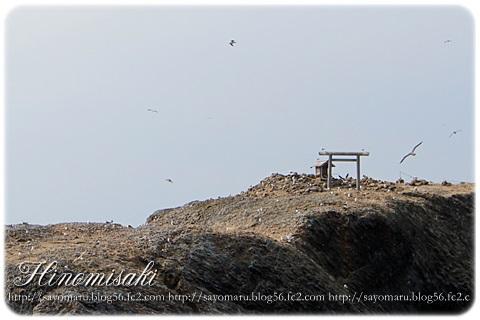 sayomaru9-440.jpg