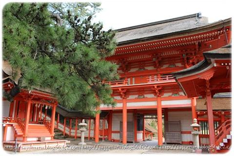 sayomaru9-444.jpg