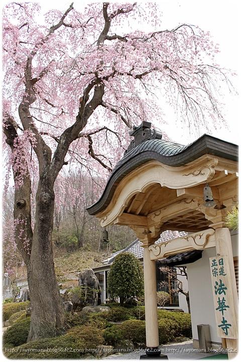 sayomaru9-643.jpg