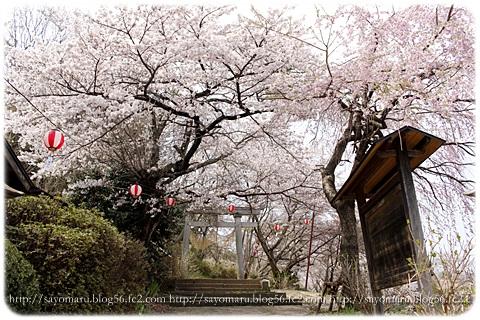 sayomaru9-645.jpg
