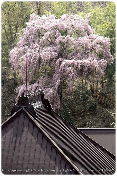 sayomaru9-658.jpg