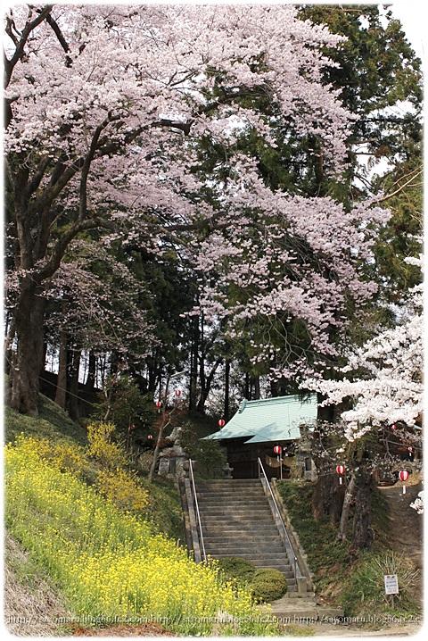 sayomaru9-667.jpg