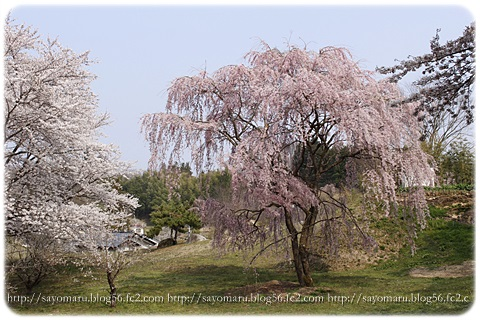 sayomaru9-680.jpg