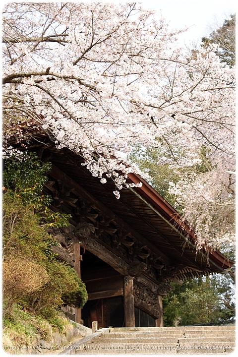 sayomaru9-684.jpg