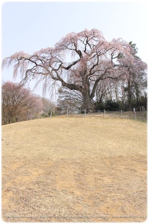 sayomaru9-698.jpg