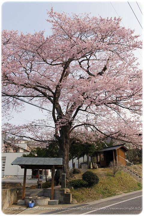 sayomaru9-703.jpg
