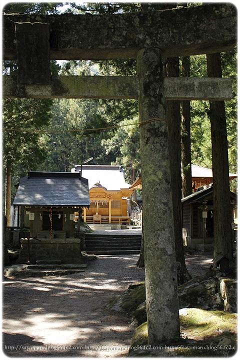 sayomaru9-980.jpg