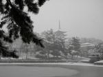 雪の五重塔