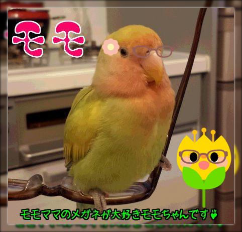 大田区のモモちゃん
