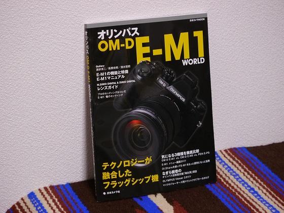 P1080919.jpg