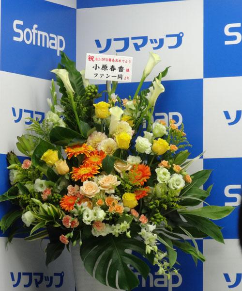 20140719_02.jpg
