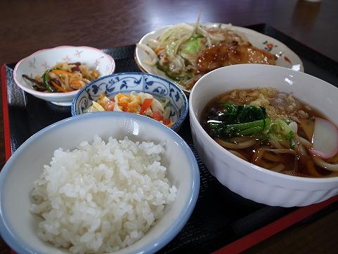 2013-07-05 たんぽぽ 003