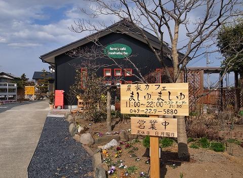 2014-03-07 ましゅましゅ 003