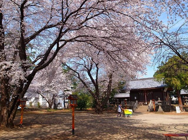 2014-04-02 上戸日枝神社 006