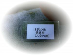 CIMG0271_convert_20140526161247.jpg