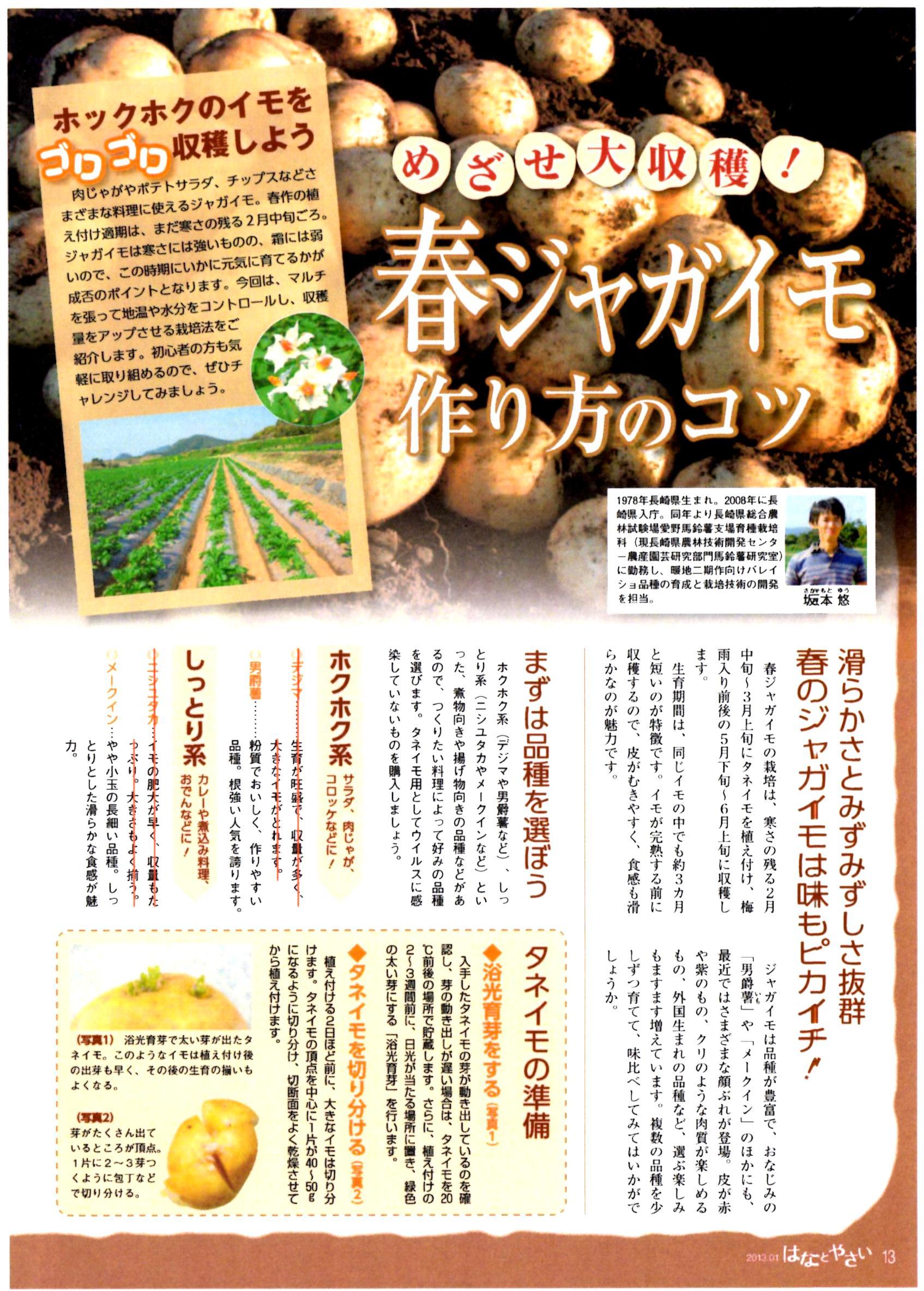 bareisyo-tsukurikata1.jpg