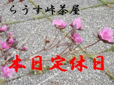 DSCF9342.jpg