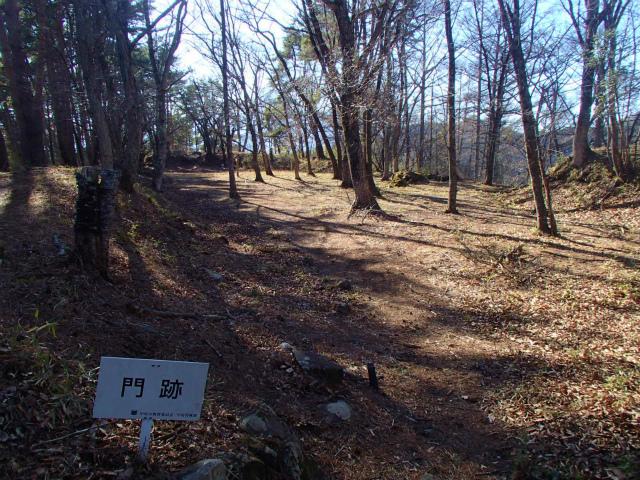 s-P3220045.jpg