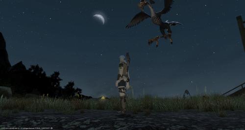 夜空が綺麗。