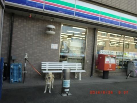 スリーエフの犬留全景
