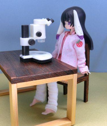実体顕微鏡 (1)
