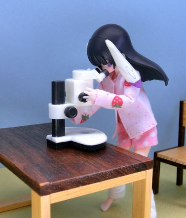実体顕微鏡 (2)